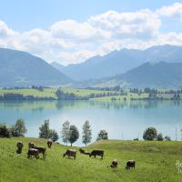 Membawa Ma dan Pa mengagumi Alpen